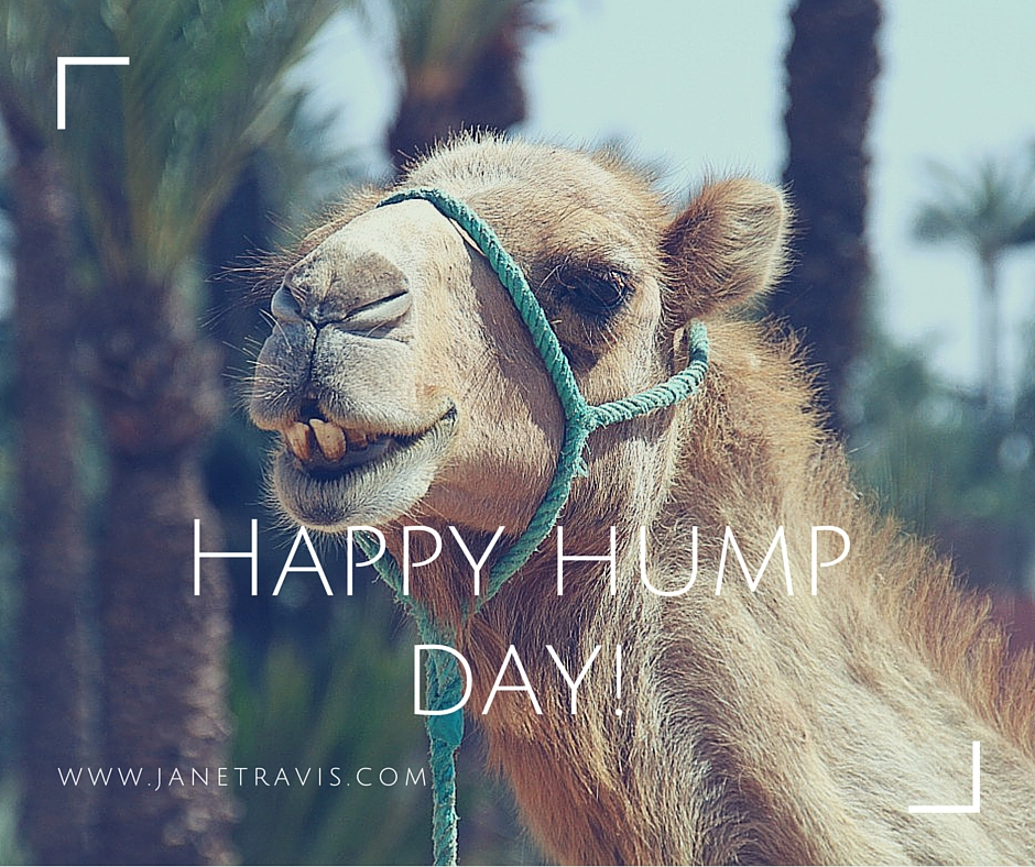 Happy hump day - the 4 step plan for an amazing weekend - Jane Travis